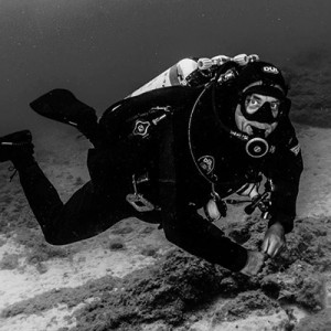 diving in tenerife with ray