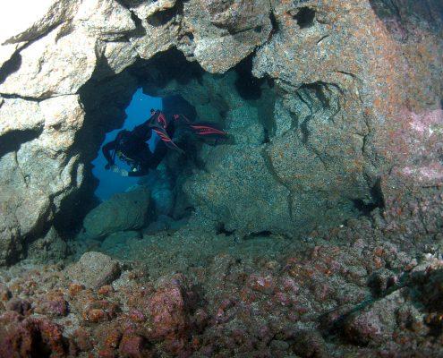 Roncadoers Del Faro diving tenerife