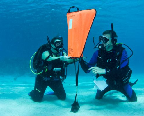 specialty instructor tenerife search and recovery
